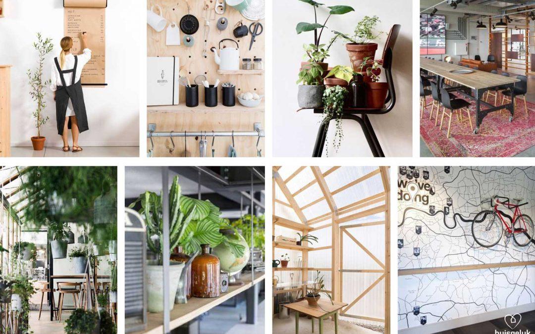 Zakelijk interieuradvies | hippe kantoorhuiskamer